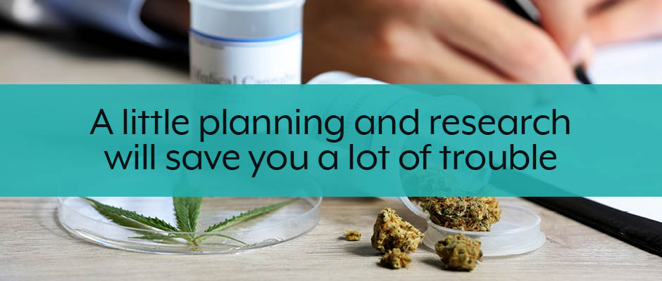plan and research your cannabis business